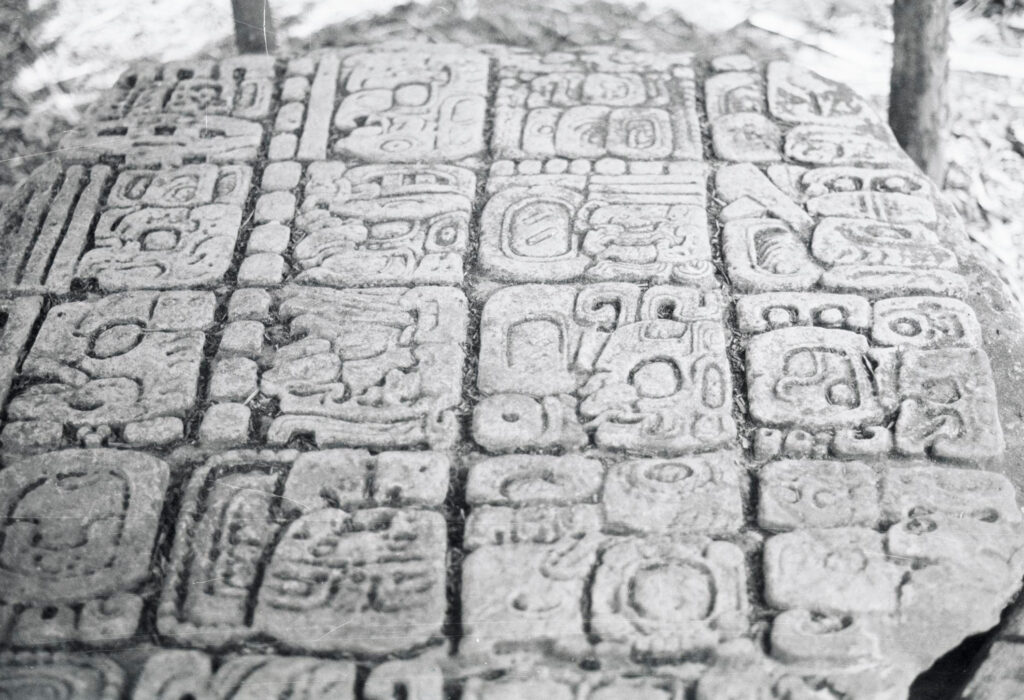 black-and-white picture of a mayan stone stela, photographed by karl herbert mayer in 1978